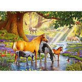 Пазл Лошади у реки, 300 деталей, Castor Land
