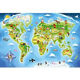 Пазл Карта мира, 40 деталей MAXI Castor Land