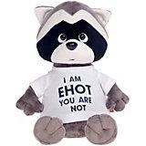Мягкая игрушка Orange Енотик Дэнни: I am Енот, 30 см