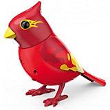 Интерактивная поющая птичка Silverlit DigiBirds с кольцом, красная
