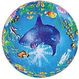 """Детский мяч Shantou Gepai """"Подводный мир"""", 22 см"""