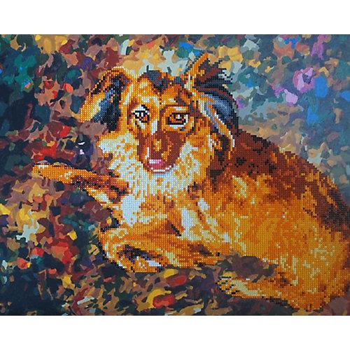 """Алмазная картина-раскраска Color KIT """"Породистый пёс"""", 40х50 см от Color KIT"""