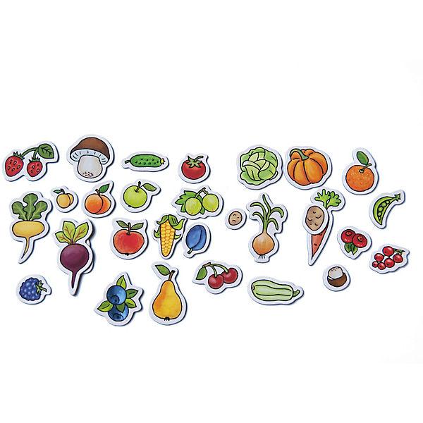 """Первая книга малыша """"Магнитные книжки"""" Овощи, фрукты, ягоды"""