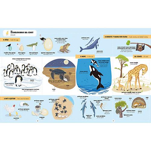 """Книга-игра """"Главная книга малыша"""" Я учу английский. 1000 животных, А. Бессон от Clever"""