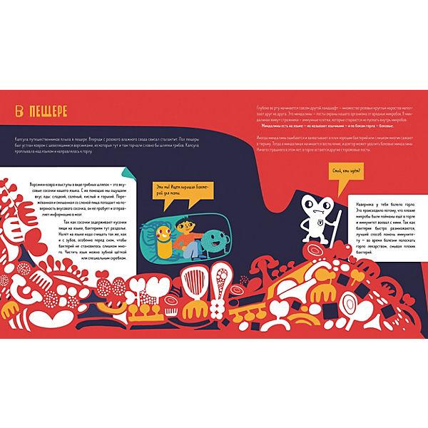 """Книга """"Приключения Тима в мире наук"""" Приключения Тима в мире бактерий, Косовская М."""