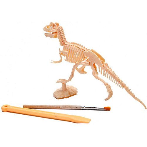 """Набор для раскопок Bradex """"Юный археолог"""" Тиранозавр от Bradex"""