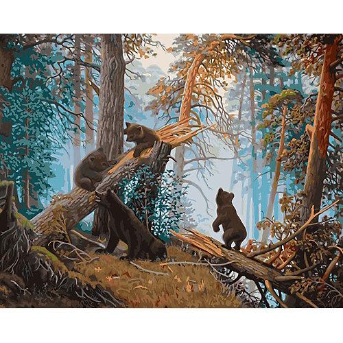 """Набор для раскрашивания по номерам Фрея """"Утро в сосновом лесу"""" от Фрея"""