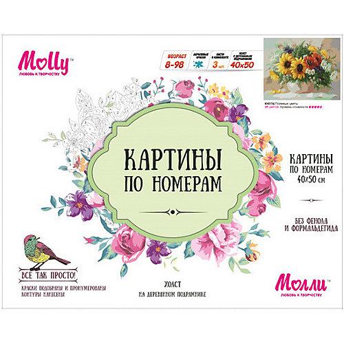 """Картина по номерам Molly """"Полевые цветы"""", 40х50 см от Molly"""