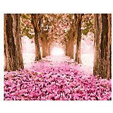 "Картина по номерам Molly ""Цветение сакуры"", 40х50 см"