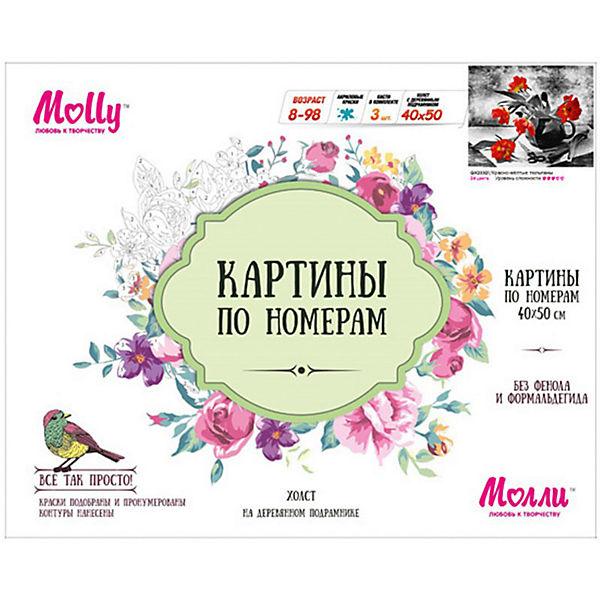 "Картина по номерам Molly ""Санкт- петербург"" Канал Грибоедова, 40х50 см"
