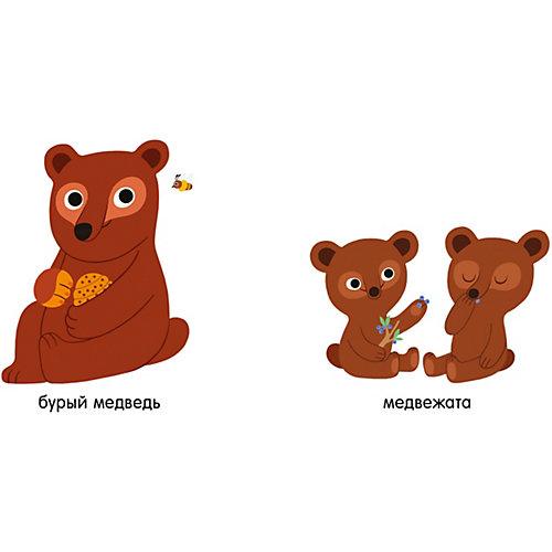 """Мои первые слова """"Животные"""", Первые книжки малыша от Clever"""