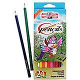 "Набор цветных карандашей KOH-I-NOOR ""Птицы"", 24 цвета"