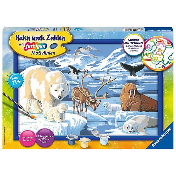 Malen Nach Zahlen 21x31 Cm Mit Farbige Motivlinien Tiere Der