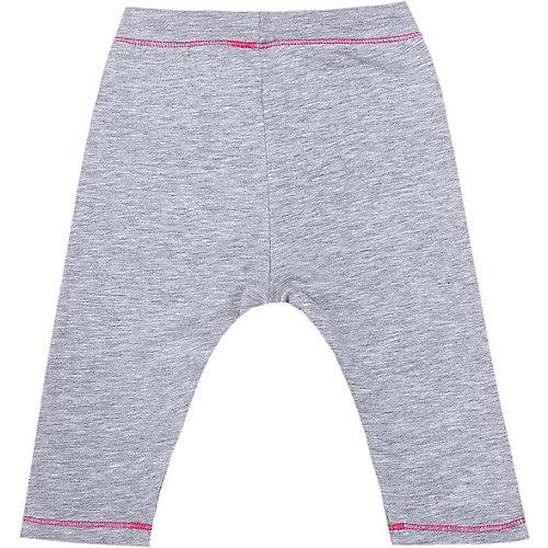 Спортивные брюки Original Marines - серый от Original Marines