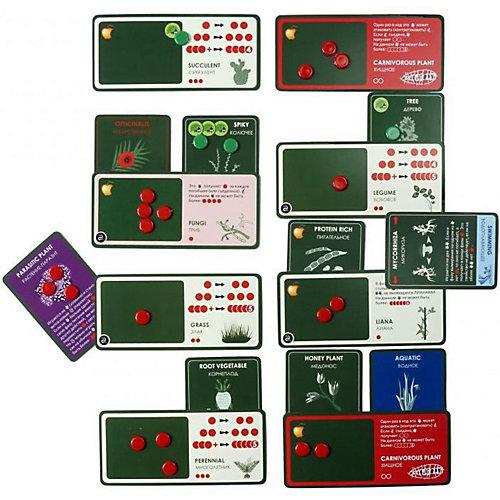 """Настольная игра Правильные игры """"Эволюция. Растения"""", дополнение от Правильные игры"""