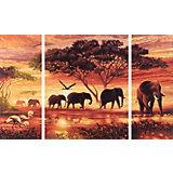 Картина-триптих по номерам Schipper Африканские слоны 50х80 см
