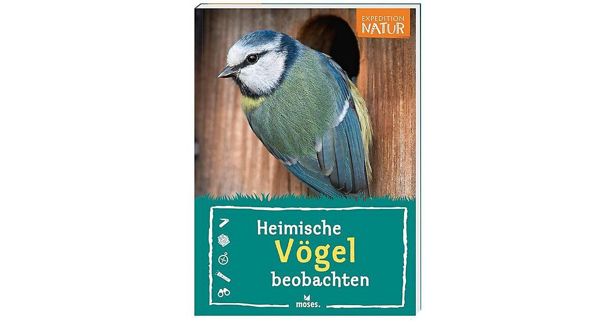 Expedition Natur: Heimische Vögel beobachten