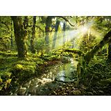 """Пазл Heye Nature """"Заброшенный парк"""", 1000 деталей"""