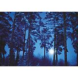 """Пазл Heye """"Полнолуние в лесу"""", 500 деталей"""