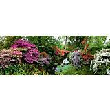 """Пазл Heye """"Сад"""", панорама, 6000 деталей"""