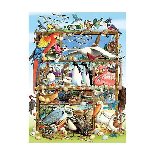 "Пазл Cobble Hill ""Птицы мира"", 400 деталей от Cobble Hill"