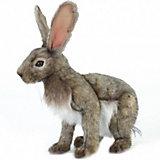 Игрушка Hansa «Заяц»,  30 см
