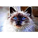 """Картина-открытка мозаикой Molly """"Сиамский кот"""""""
