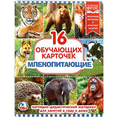 Обучающие карточки Умка «Млекопитающие» от Умка