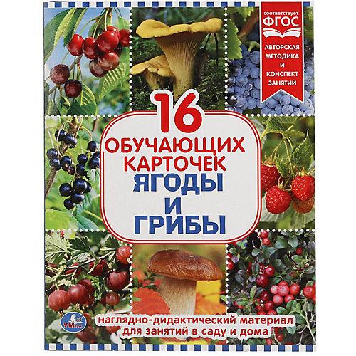 Обучающие карточки Умка «Ягоды и грибы» от Умка