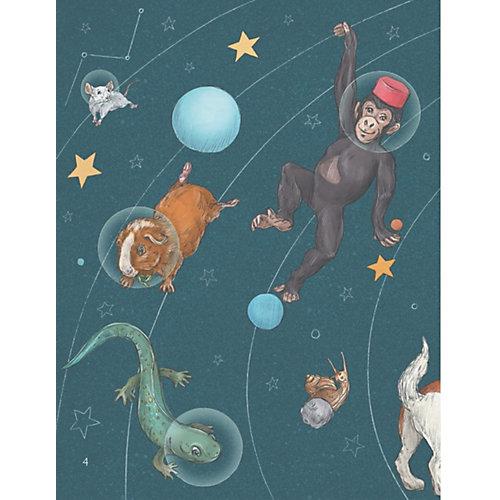 Животные-космонавты. Первые покорители космоса от ПИТЕР