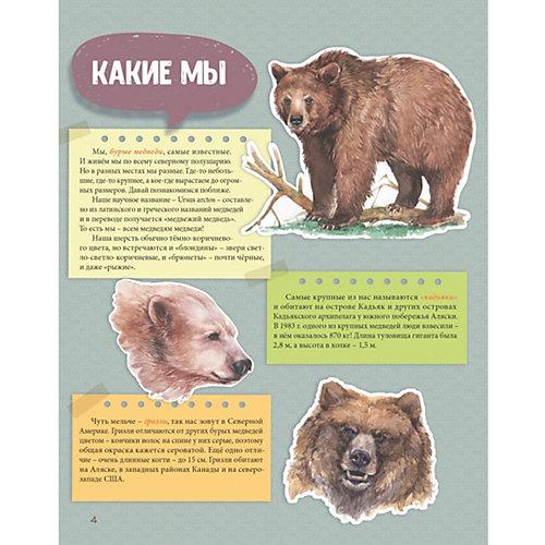 Мы - Медведи от ПИТЕР