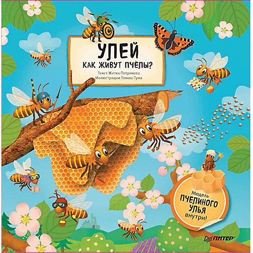 Улей. Как живут пчёлы? от ПИТЕР