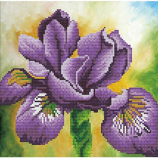 Мозаика по номерам Color KIT Ирис