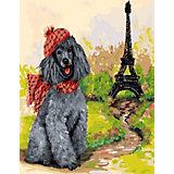 Картина по номерам Color KIT Пудель - парижанин