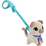 "Мягкая игрушка FurReal Friends ""Маленький питомец на поводке"" Кошка"