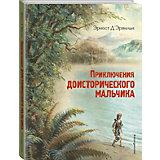 Книга Приключения доисторического мальчика, Эрнест Д'Эрвильи