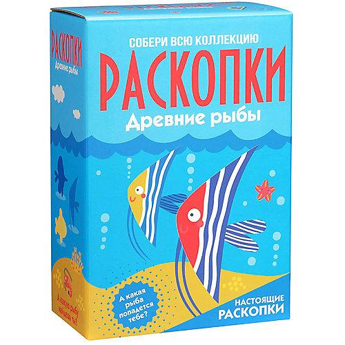 """Набор для проведения раскопок """"Рыбы"""" (большой)"""