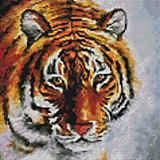 Алмазная мозаика Белоснежка Тигр на снегу, 30х30 см