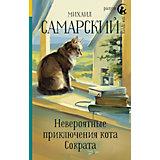 """Радуга для друга """"Невероятные приключения кота Сократа"""", Самарский М."""