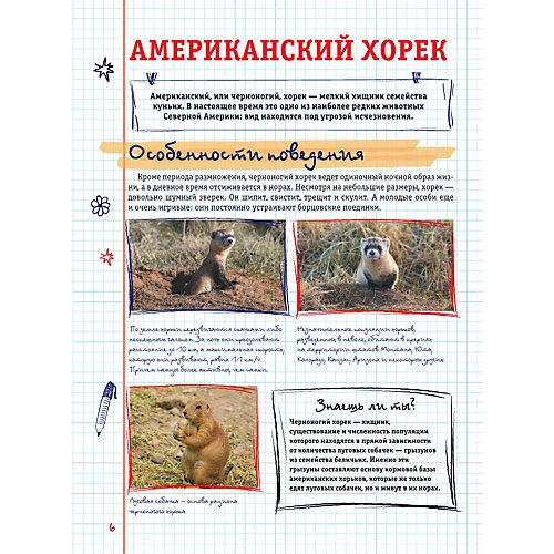 Все, что должны знать образованные девочки и мальчики о животных, Вайткене Л. от Издательство АСТ