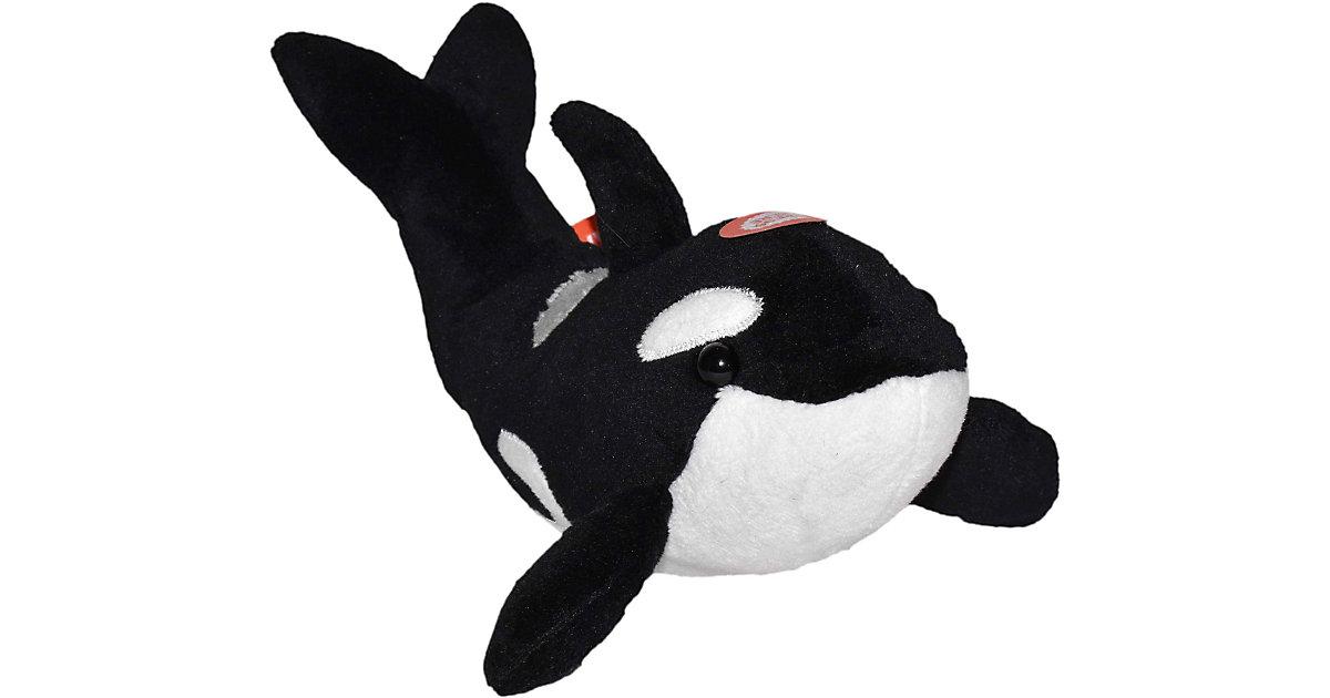 WILD CALLS ORCA