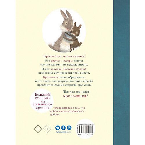 """Сказка """"Большой сюрприз для маленького кролика"""", Хаддоу С. от Издательство АСТ"""