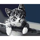 Набор для раскрашивания по номерам Артвентура «Серая нежность»