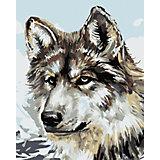 Набор для раскрашивания по номерам Артвентура «Серый волк»