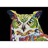Набор для раскрашивания по номерам Артвентура «Радужная сова»