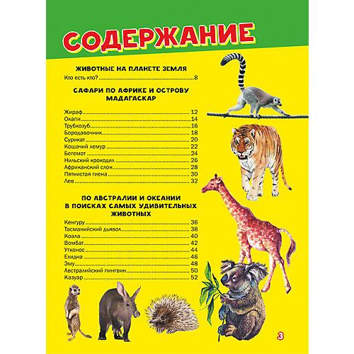 Моя первая большая книга о животных от Издательство АСТ