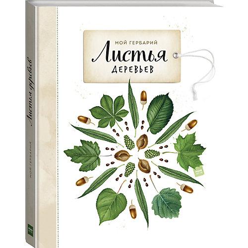 """Книга Мой гербарий """"Листья деревьев"""" от Манн, Иванов и Фербер"""