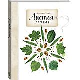 """Книга Мой гербарий """"Листья деревьев"""""""