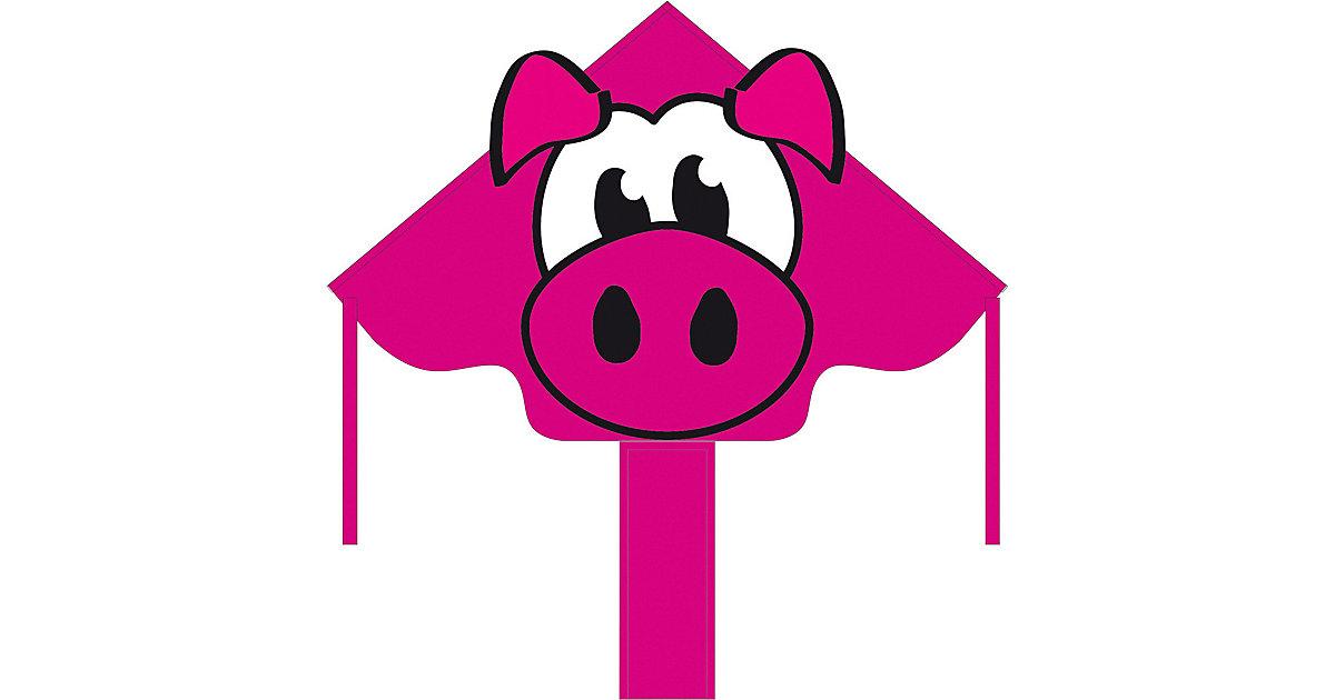 Ecoline: Simple Flyer Piggy 120 cm mehrfarbig