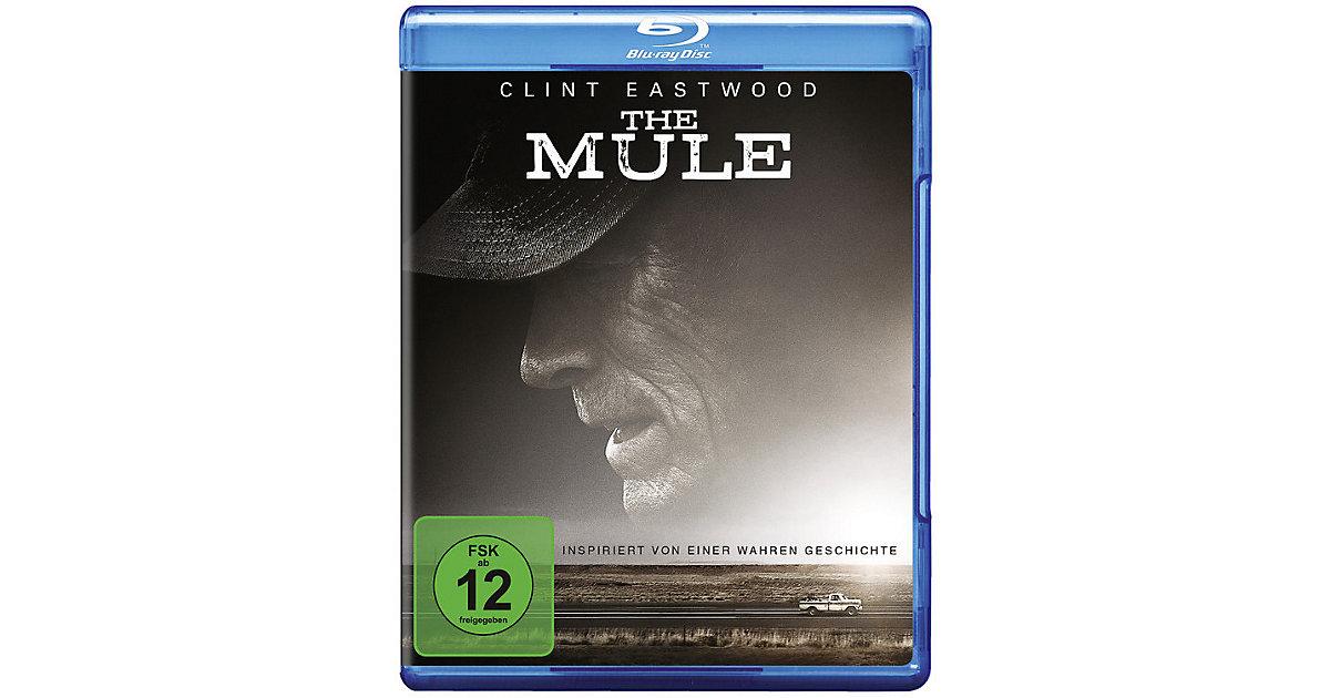 BLU-RAY The Mule Hörbuch